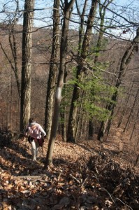 The steep, narrow ridges of the terrain can make the Knobstone Trail a challenge to hike