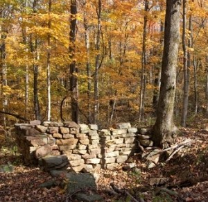 The trail even offers a bit of pioneer history, passing the remains of old homesteads