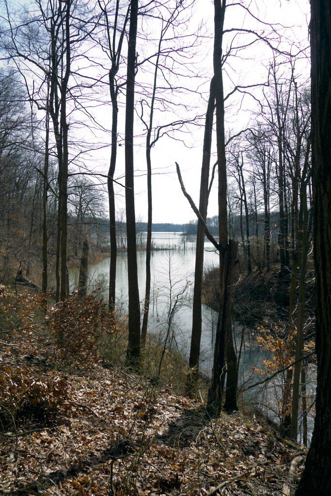 Cagles Mill Lake View