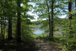 View of Cagles Mill Lake from the Two Falls Trail