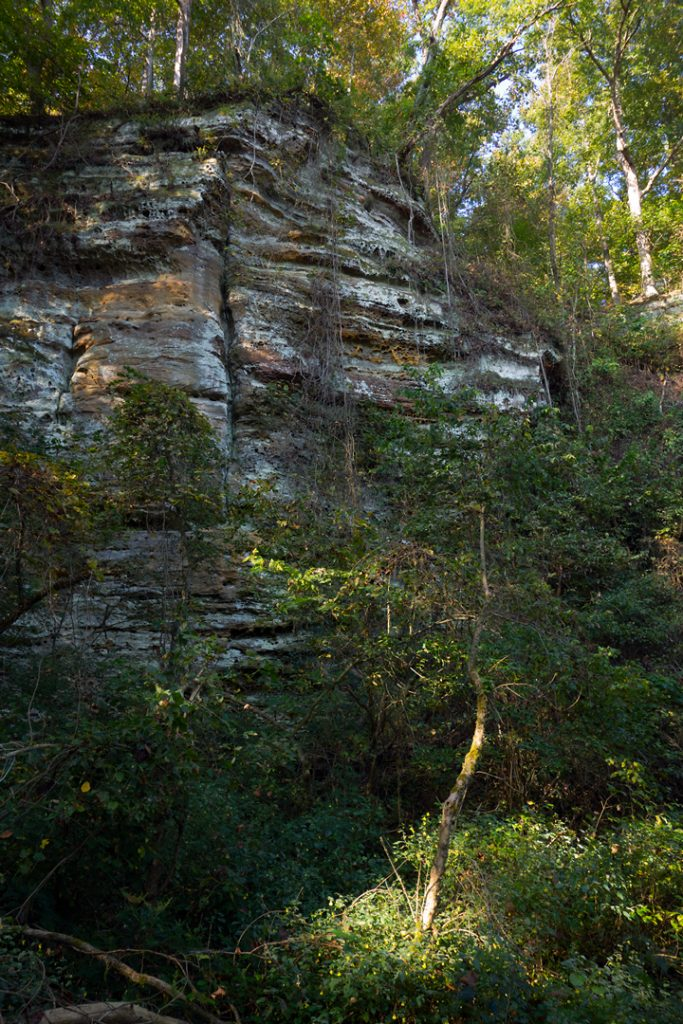 Bluffs at Beaver Bend Nature Preserve