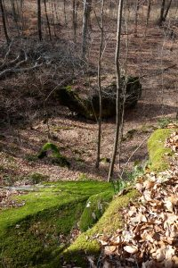 Looking into the valley below Nubbin Ridge