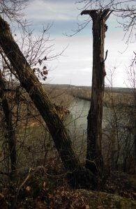 View of White River from Nubbin Ridge