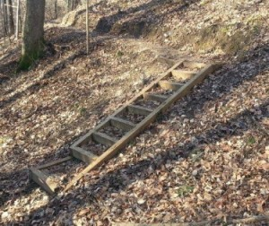 The terrain at Jimmy Nash Park is rugged enough to need steps and bridges